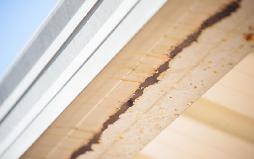 4 Signs You Need New Gutters Champion Services